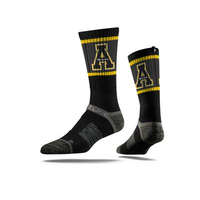 Appalachian State University collections