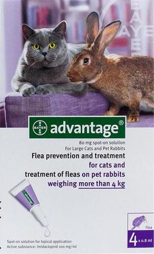 Advantage for Cats & Kittens