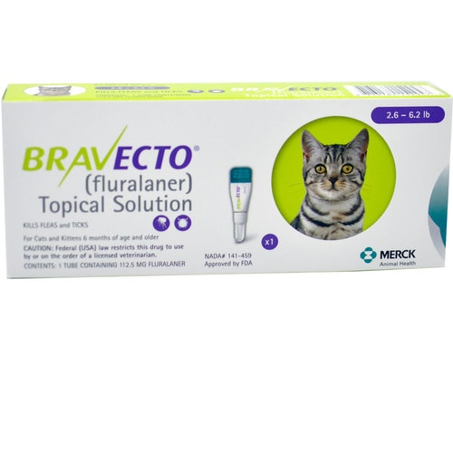Bravecto for Cats & Kittens
