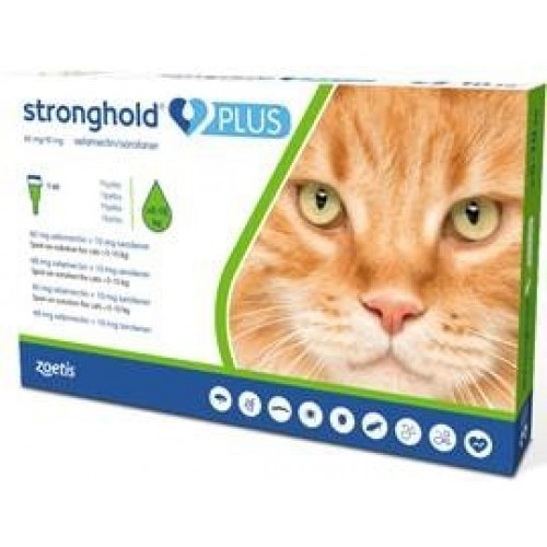 Stronghold Plus for Cats & Kittens