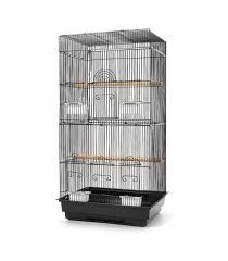 Bird Supplies