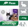 Cat Fleas, Ticks & Wormers