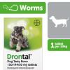 Dog Fleas, Ticks & Wormers