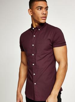 Men's collared Shirts