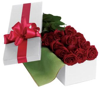 Rose Bouquets & Arrangements