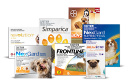 Heartworm Medicine Products for Cats
