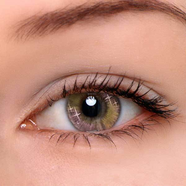 Dream Contacts