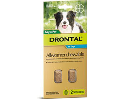 Drontal Allwormer Chewable Dog 10kg 2 Packs